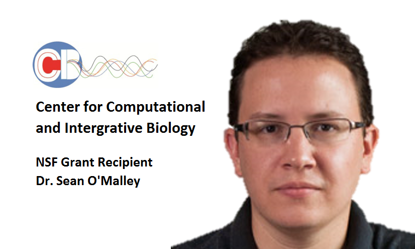 OMalley -- NSF Grant Recipient3