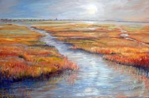 Jersey Wetlands